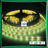 Luce di striscia, striscia flessibile della luce di striscia di /LED LED (LC-NW5050-12V/60P-IP64)