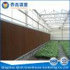 冷却装置の野菜の温室が付いている中国のフィルムの温室
