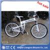 La montaña de la aleación de aluminio 26 que compite con la bici se divierte la bici del carbón del camino de la bici de la ciudad