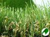 Artificial/Synthetic Gras met Mu
