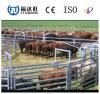 Загородка трубы утюга Китая сверхмощная для окунутых лошади/скотин с горячим гальванизировано