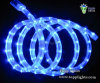 2wires Waterproof LED Lighting Rope (TP-R2W-30 (36))