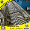 Schwarzes Round Fencing Barrier und Railing Steel Pipes