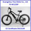 山の中国広東省からの26inchタイヤが付いている電気バイクの脂肪