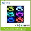 높은 산출 루멘 & 색깔 변하기 쉬워 RGB LED 지구