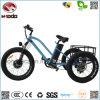Motorino elettrico popolare della spiaggia della bici 3wheel del quadrato con la visualizzazione dell'affissione a cristalli liquidi