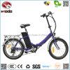 20 E-Bike педали велосипеда Ce En15194 Bike города дюйма 250W миниый дешевый электрический складывая Approved складной