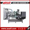 Belangrijke Fabrikant & Leverancier voor Diesel Elektrische Generator