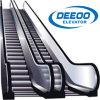Escada rolante interna ao ar livre da HOME do supermercado da alameda de compra