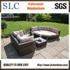 Sofa synthétique de rotin (SC-A7635)