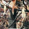 Kingtop 1mの幅のカムフラージュデザイン水転送の印刷のフィルムWdf118-1