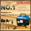 500W de draagbare Generator van de Benzine van de Tijger van de Enige Fase (EM650)