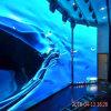 Schermo di visualizzazione di alluminio di fusione sotto pressione dell'interno del LED del Governo P3 per intrattenimento/hotel/servizio/fase