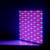 o diodo emissor de luz 14W cresce o diodo emissor de luz que claro do painel 225 o diodo emissor de luz vermelho hidropónico do azul cresce Amazon claro