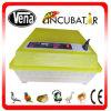 Hatching élevé Rate 48 Eggs Mini Chicken Egg Incubator à vendre