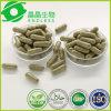 Cápsulas antioxidantes de la grosella espinosa del extracto de Moringa +Amla del alimento herbario indio