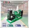 Máquina de la potencia de la basura de China 20 kilovatios - conjunto de generador del biogás de 600 kilovatios