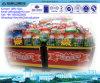 La plus grande usine de Chinar pour la poudre de détergent de blanchisserie
