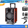 Preiswertester Preis-Berufsmusik-Laufkatze-Lautsprecher