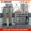 Fabrik direkt Behandlung-Pflanze RO-10000L/H
