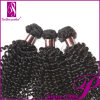 100% Mongolian Virgin Hair Kinky Curly Hair Weave