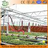 Sistema de regadera plástico de riego del diseño de la irrigación