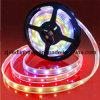 SMD5050 imprägniern LED-flexiblen Streifen (ZF221)