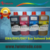 Conservazione 36 Months Irsp Eco Solvent Ink per Dx4 Printhead Eco Solvent Printer