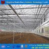 Estufa plástica do arco da proteção UV em Poland para a agricultura