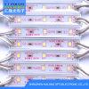 접착제 2835 LED 모듈을%s 가진 LED SMD 75*10mm 플라스틱