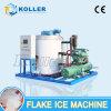 Koller 8 tonnes d'éclaille de machine de glace Kp80 avec Efficieny élevé, usine de traitement du poisson/viande