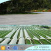 Stof van de Landbouw van pp Spunbond de niet Geweven UV Bestand