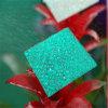Folha gravada personalizada do sólido do policarbonato
