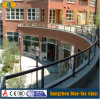 Handrail를 위한 12mm Clear Toughened Glass