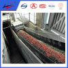 Belt resistente e Calor-resistente Conveyor do fogo - para Hot Coal Transporting