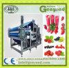 Machine van Juicing van het Type van Riem van de hoge Efficiency de Industriële