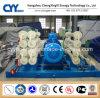 Posto de gasolina Patim-Montado CNG31 da combinação de GNL de Lcng CNG