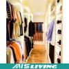 Pequeña caminata del diseño de los muebles caseros en el guardarropa (AIS-W294)