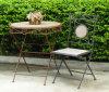 Muebles al aire libre de madera de la buena durabilidad