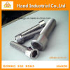 Top Quality Ss 316 3/4 ~ 4 Cilindro Hex Hex Tornillos