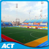 Fih Campo de hockey artificial rojo de hockey de hockey (H12)
