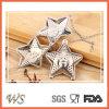 Forme d'étoile d'Infuser du thé Ws-If031 avec du matériau à chaînes d'acier inoxydable de filtre de thé