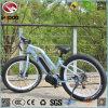 250W 26 인치 뚱뚱한 타이어 전기 바닷가 자전거 중앙 모터 고품질 기관자전차 싼 스쿠터 페달 차량