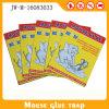 Trappe collante intense de souris de panneaux de trappes de rat de plaque de gant de baseball de rat de souris de colle