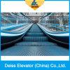 Transportadores de pasajeros paralelo Pública automática Escalera mecánica con acero inoxidable Paso
