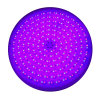 Luces llenadas rienda impermeable de la piscina del 100% LED