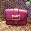 2017 borse calde delle donne di modo della signora Clutch Designer Shoudler Bags di vendita fatte in Cina Sy7792