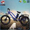 Las velocidades del marco 48V 500W 5 de la aleación afrontan el triciclo eléctrico gordo de la rueda del motor 3 para los adultos