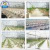Holländisches Bucket Drip Irrigation System für Large Scale Growing