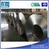 El cinc de Dx51d cubrió la bobina de acero galvanizada sumergida caliente
